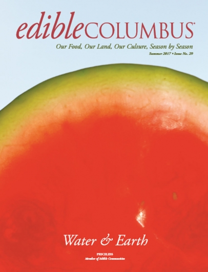 up close watermelon on cover