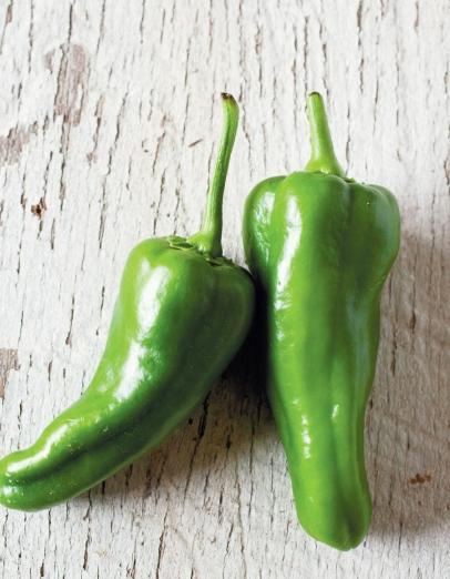 green shishito peppers