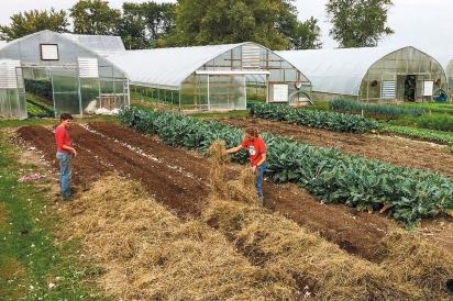 Rachel Hershberger and Ben Hartman transformed their small farm