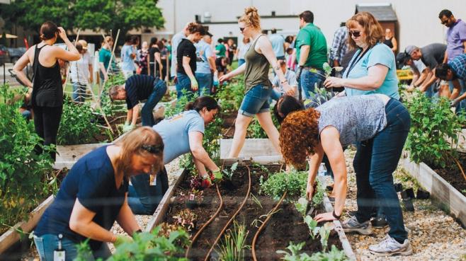 big lots community garden