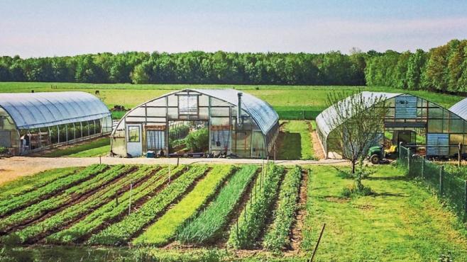 Clay Bottom Farm (Goshen, Indiana)