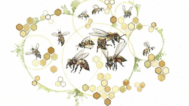 illustration of bees and honeycomb network of hives